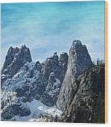 First Season's Snowfall Wood Print by Christine Burdine