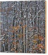 First Snow 3 Wood Print