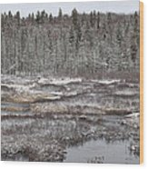 First Snow-algonquin Provincial Park Wood Print