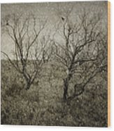First Snow Wood Print by Amy Weiss
