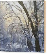 First Snow Wood Print by Gun Legler