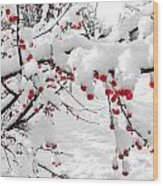 First Snow Wood Print by Michelle and John Ressler