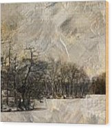 First Winter Wood Print