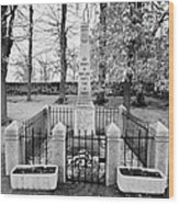 First World War Memorial French Mont-louis Pyrenees-orientales France Wood Print by Joe Fox