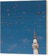 Firuz Aga Mosque Seagulls Wood Print