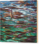 Fish 1 Wood Print by Dawn Eshelman