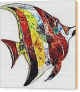 Fish 505-11-13 Marucii Wood Print