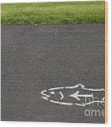Fish And Arrow On Pavement Wood Print