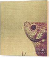 Fish Can Be Sad Too Wood Print