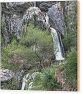 Fish Canyon Falls Wood Print