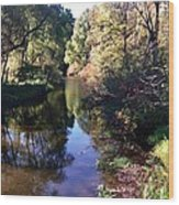 Fish Creek Wood Print