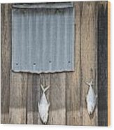 Fish Drying Outside Fisherman House Wood Print