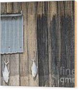 Fish Drying Outside Rustic Fisherman House Wood Print
