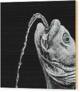Fish Head Fountain Wood Print