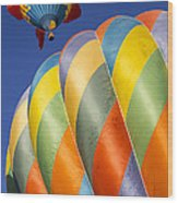 Fish In The Sky Wood Print by Garry Gay