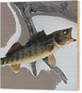 Fish Mount Set 02 C Wood Print