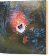Fish Mouth Wood Print
