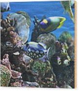 Fish - National Aquarium In Baltimore Md - 1212113 Wood Print by DC Photographer
