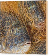 Fish On The Net Wood Print by Stelios Kleanthous