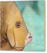 Fish Profile Wood Print