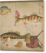 Fish Trio-a-basket Weave Border Wood Print