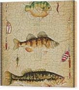 Fish Trio-c-basket Weave Wood Print