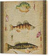 Fish Trio-c-green Wood Print