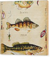 Fish Trio-c Wood Print