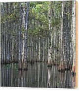 Fisheating Creek Wood Print by Bob Jackson