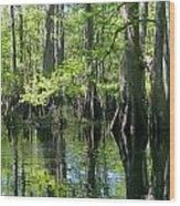 Fisheating Creek Wood Print