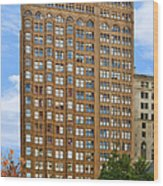 Fisher Building - A Neo-gothic Chicago Landmark Wood Print