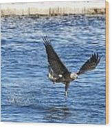 Fishing Ballet Wood Print