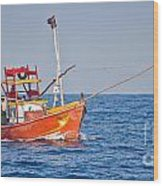 Fishing Boat  Sri Lanka Wood Print