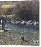 Fishing Dog On Point Wood Print
