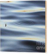 Fishing Float  Wood Print
