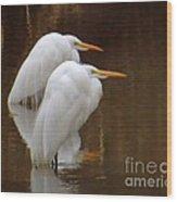 Fishing In Muddy Waters Wood Print