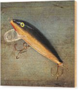 Fishing Lure II Wood Print