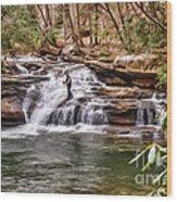 Fishing Mill Creek Falls In West Virginia Wood Print