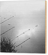 Fishing Poles Wood Print by Mike McCool