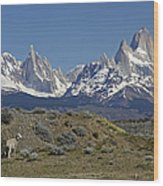 Fitz Roy Range In Springtime 2 Wood Print