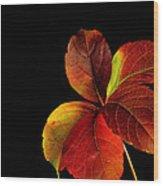 Five Leaves Wood Print