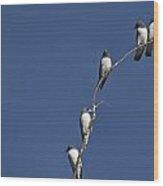 Five Of A Kind Wood Print