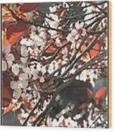 Five Petals - Spring Blossoms Wood Print