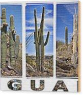 Five Saguaros Wood Print