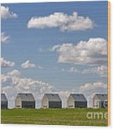 Five Sheds On The Alberta Prairie Wood Print