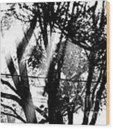 Five Thirty May Tenth Twenty Thirteen Wood Print
