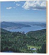 Fjord View Wood Print
