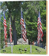 Flag - Illinois Veterans Home - Luther Fine Art Wood Print by Luther Fine Art