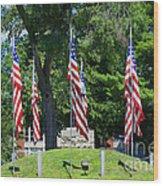 Flag - Illinois Veterans Home - Luther Fine Art Wood Print