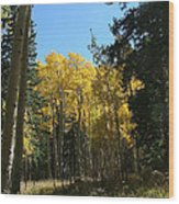 Flagstaff Aspens 801 Wood Print